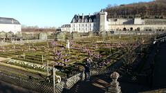 i Giardini del Castello di Villandry