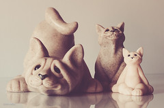 Happy Cats! (BGDL) Tags: cats 6 reflections feline sculptures tabletop odc happycats niftyfifty smallsmallersmallest nikond7000 bgdl lightroom5 nikkor50mm118g 52in2014 smileycats