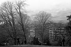 Cerf volant aux Buttes (photogreuhphies) Tags: leica paris france kodak 400tx m3 elmar 50mmf28