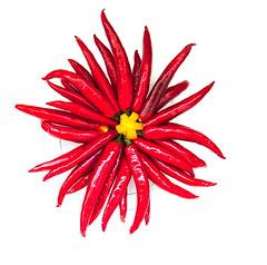 aNFX_1918 (youngman242) Tags: life home still bouquet chilli vietnamkhanhhoamarch14