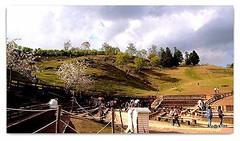 Cingjing Farmland. (cpark188) Tags: landscape farm taiwan picasa greenland cingjing 1442mm olympusepl3 olyepl3