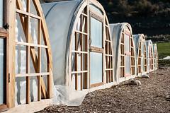 High tunnels_DSC7266 (Anne Stephenson) Tags: wood plant green utah spring farm entrance tunnel growth soil dirt doorway frame agriculture provo csa lanayferme