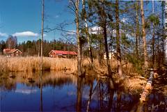 Rosenlund, Turingen #1 (George The Photographer) Tags: sweden  skog bjrk vatten historia grd nykvarn torp rosenlund sdermanland spegling kulturmilj hkmossen turingen