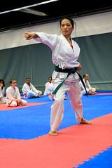 Martial Arts in Iceland: Soobahkdo & Taekwondo (silkipix) Tags: iceland martial arts taekwondo soobahkdo