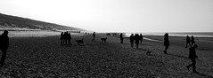 Beach (RS81ALKMAAR) Tags: en white black beach strand zwart wit