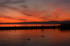 Sunset on Lake Leman (bertrandwaridel) Tags: sunset sky lake water birds clouds reflections switzerland pier boat suisse harbour lausanne jura ouchy lakegeneva vaud lacléman lakeleman juramountains lausanneouchy