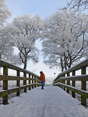 Snowy bridge (Rene Mensen) Tags: bridge winter snow holland nikon rene emmen mensen 2015 rietlanden oranjekanaal d5100