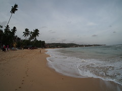 Sri Lankan beaches on the south coust!