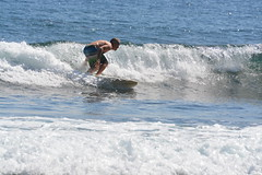 DSC_0083 (aliciadesign) Tags: surf whales bigisland honolii