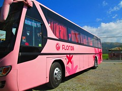 Stop Over (III-cocoy22-III) Tags: bus florida philippines transport over stop sur ilocos laoag norte gv tagudin f33
