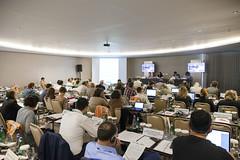 24846_0088 (FAO News) Tags: turkey asia europe antalya ngo fao cso regionalconsultation erc30 faoregionalconferenceforeuropeerc