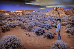 DSC_0034-EditFAA (john.cote58) Tags: portrait sky woman plants art valleyoffire rock stone ir outside outdoors design nationalpark gallery glow desert nevada dream brush fairy creation illusion fantasy mojave infrared imagination hallucination formations creativeedit