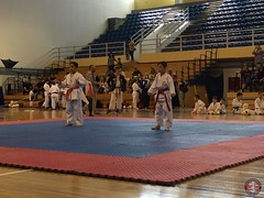 stefanou_15_5_2016_knockdown_181