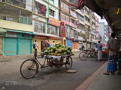 Coconuts for sale on a bicycle cart (karlahovde) Tags: street travel green water bicycle market coconut scene fresh round bangladesh bazar shooping friut