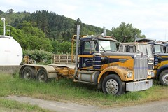 Ireland (1) (RyanP77) Tags: ireland trucking myrtle point oregon logger logging log truck kenworth t800 whitlog whit kw timber trucks fleet
