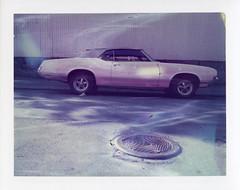 (k.e.k.) Tags: film analog polaroid instant expired landcamera peelapart polaroid180 polaroid108