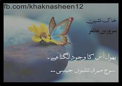 urdu poetry by sarwar Mughal (sarwar Mughal) Tags: sarwarmughal kashmiri urdupoetry freekashmir chanjath kashmir