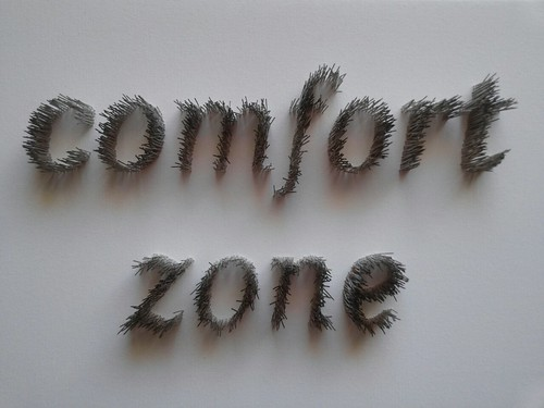 comfort zone- pins on canvas 50x30x5cm by Sharon Pazner, on Flickr