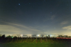 Stars 'n' wine (Stefan Giese) Tags: sky reflection night stars bodensee walimex f28 reflextion sterne 14mm nachthimmel