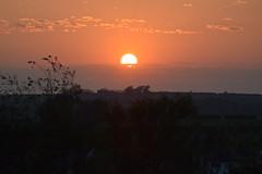 ANGLESEY SUNSET LLANFAIRPWLLGWYNGYLL (pwllgwyngyll) Tags: sunset sun by wales solar image north may going down views anglesey 2016 pwllgwyngyll llanfairpwll penmynydd