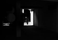 last light (Zlatko Vickovic) Tags: light shadow blackandwhite monochrome serbia streetphotography surreal novisad vojvodina srbija streetbw streetphotographybw streetstreetphoto streetphotobw zlatkovickovic zlatkovickovicphotography
