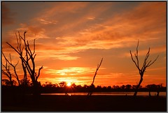 Yet Another Green Lake Sunset (florahaggis) Tags: trees sky canon colours silhouettes australia victoria greenlake horsham deadtrees pc3400 westernhighway wimmera cloudsstormssunsetssunrises