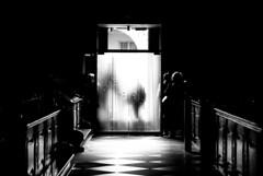 Is that heaven? (cb-zoom l Christian Becker-Fotografie) Tags: light blackandwhite church licht nikon heaven im god dom streetphotography kirche himmel dslr freiburg schatten schwarzwald mnster gott breisgau glaube spiegelreflex schwarzweis nikond60 graustufe streetfotografie cbzoom