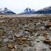 Glacier Grind