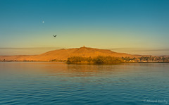 mourning (Ahmed Dardig) Tags: africa travel trees moon bird landscape photography mourning egypt nile mount explore aswan nileriver explored southegypt