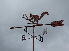 Girouette  St-Hilaire-St-Mesmin (Loiret) (Patrick Verhaeghe) Tags: saint non cureuil hilaire quo girouette mesmin ascendet