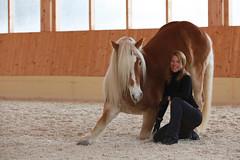 developing_weinberg_16 (jessica_emmerich) Tags: jessica schloss horsemanship beritt emmerich amerang jungpferdeausbildung