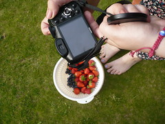(ladyedit) Tags: camera fruits fruit strawberry hand strawberries blueberry blueberries