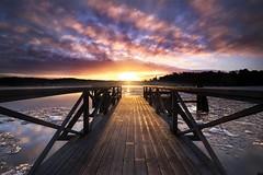 River Dreams (Teemu Kustila Photography) Tags: sunrise leica21mmsuperelmarmf34asph sunset light golden beautiful ice frozen winter ruissalo turku finland ilobsterit visitfinland kissmyturku leefilters
