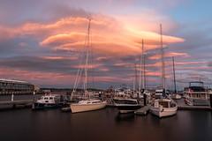 Typical winter light (inventing pictures) Tags: light sunset sea boat meer sonnenuntergang australia boote tasmania australien hobart tassie tasmansea downunder tasmanien ozeanien hobartandbeyond
