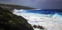 Wild Liku (fotonut NZ) Tags: ocean blue sea island coast dangerous rocks waves wind outdoor scenic east cave reef rugged niue liku