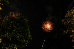 I know, it's not a good shot...but it's my first try with my Canon, and I love fireworks! :) (LaDani74) Tags: night florence san fireworks firenze patron giovanni