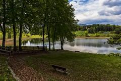 valle dei laghi 160508_173 (gmcvrphoto) Tags: lago corso albero acqua riflessi prato calma paesaggio trentino collina bosco pianta panchina dacqua allaperto recinto lagolo