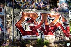 P79-9 (logical.progression) Tags: street urban streetart color art photography graffiti hall cool colorful artist fame spray urbanart writers graff piece hof desing graffitiart sprayart graffart graffitiwall graffittiart logicalprogression graffitiworld thegoodshit urbanarte garff graffitiporn instagraff streetarteverywhere welovestreetart streeartphoto graffitwriter streeartphotography