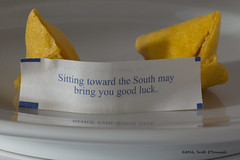 Good Fortune (scottnj) Tags: cookie fortunecookie fortune 365project scottnj cy365 scottodonnellphotography reddit365 redditphotoproject