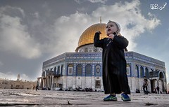 In the presence of the purest hearts (TeamPalestina) Tags: heritage beautiful architecture sunrise hope amazing photographer sweet palestine jerusalem domeoftherock blockade ramadan freepalestine alaqsa palestinian occupation goldendome  oldcityjerusalem landscapecaptures