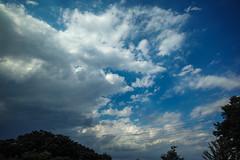 DP0Q2676lr (yoshitoshi ABe) Tags: family sky cloud sigma  dp0quattro 20160626