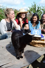 Midnight comes to say hello to participants in a tincture making workshop (Permaculture Association) Tags: wales gathering ecovillage permaculture 2016 lammas cyrmu paramaethu