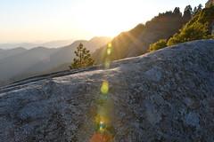 DEH_1558 (sobca) Tags: trail dome granite sunray sequoiakingscanyonnationalparks giantforest sierramountains mororock