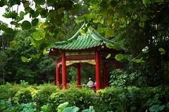 _5 (Taiwan's Riccardo) Tags: ltm color digital taiwan rangefinder botanicalgarden  l39  colorskopar 2016 28mmf35 sonyccd voigtlanderlens epsonrd1x