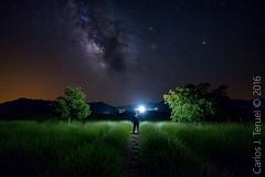 alone in the darkness (Carlos J. Teruel) Tags: stars landscape nikon murcia le cielo estrellas nocturna nocturnas estrella milkyway lavanda 1835 lavenders vialactea nikon1835 campodesanjuan xaviersam carlosjteruel d800e nikonafsnikkor1835mmf3545ged