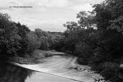 A silky looking river Aire as the water goes over the weir. (MAMF photography.) Tags: uk greatbritain trees summer england blackandwhite bw art nature water monochrome beauty sex river photography photo blackwhite google nikon scenery flickr noir image noiretblanc unitedkingdom britain negro north leeds scenic july gb upnorth pretoebranco schwarz horsforth biancoenero westyorkshire riveraire slowshutterspeed flickrcom greatphoto googleimages northernengland ndfilter enblancoynegro greatphotographers mamf ls13 inbiancoenero schwarzundweis variablendfilter nikond7100 mamfphotography