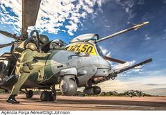 AH-2 Sabre (MI-35) da Força Aérea Brasileira (Força Aérea Brasileira - Página Oficial) Tags: brasil helicopter pilot helicoptero piloto portovelho aeronave rondônia forcaaereabrasileira interceptador milmi35 fotojohnsonbarros ah2sabre interceptacao