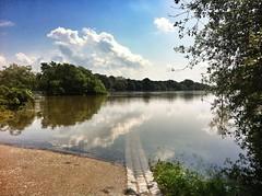 08.06.2013: an der Sternbrücke mit Blick in den Stadtpark (zwischen 11:45 und 13:00 Uhr).