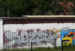 graffiti (wojofoto) Tags: holland graffiti nederland netherland sole trackside wojofoto