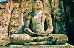 Sitting Buddha (iTimbo61) Tags: travel travelling beautiful statue stone architecture buildings asian temple ancient asia buddha buddhist buddhism olympus structure sri lanka om1 e500 travelphotography olympuscameras